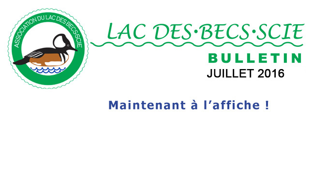 Avis BULLETIN jUILLET 2016 645 x 350
