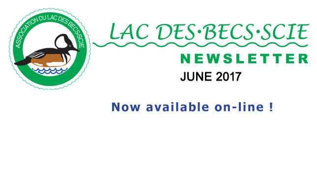 Notice re JUNE 2017 newsletter -645 x 350